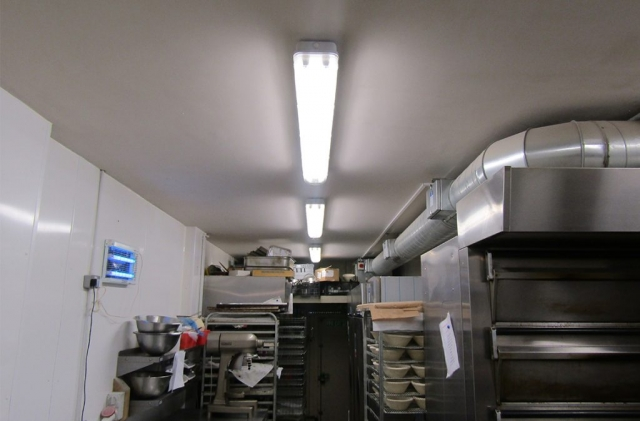 Commercial lighting installation in Dorset